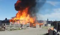 Video: Desesperación tras el incendio de una casilla