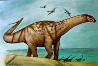 Descubrieron una nueva especie de dinosaurio: vivió en Río Negro hace más de 70 millones de años